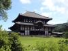 temple-todai-ji-Nara-derriere-arbre