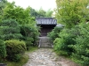 temple-toshodai-ji-Nara-cache-verdure