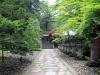 Nikko-futarasan-jinja-allee-lanterne