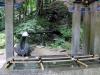 Nikko-futarasan-jinja-chozuya-eau-source