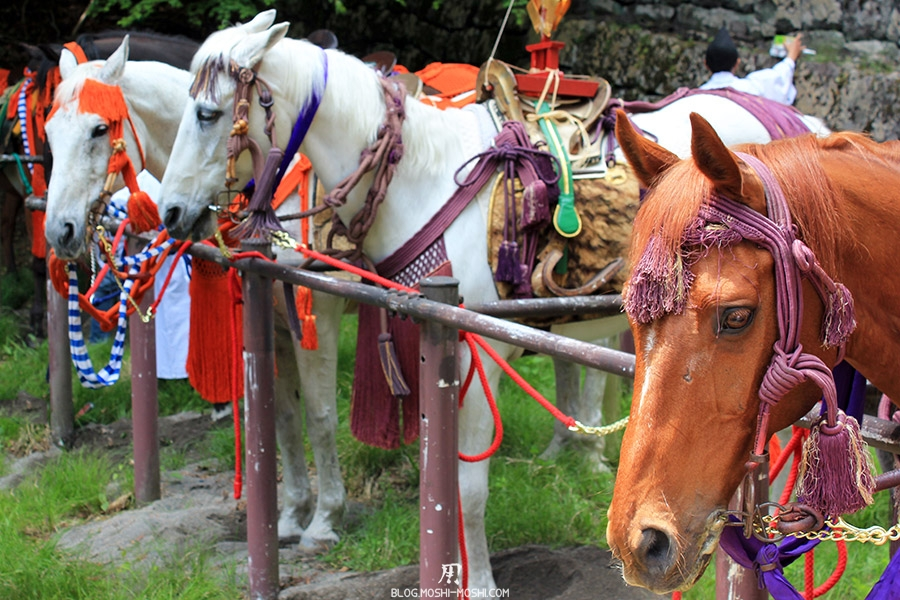 nikko-shunki-reitaisai-matsuri-grand-festival-de-printemps-chevaux-pause