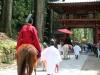 nikko-shunki-reitaisai-matsuri-grand-festival-de-printemps-cheval-ferme-defile