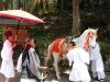 nikko-shunki-reitaisai-matsuri-grand-festival-de-printemps-preparation-cheval-blanc