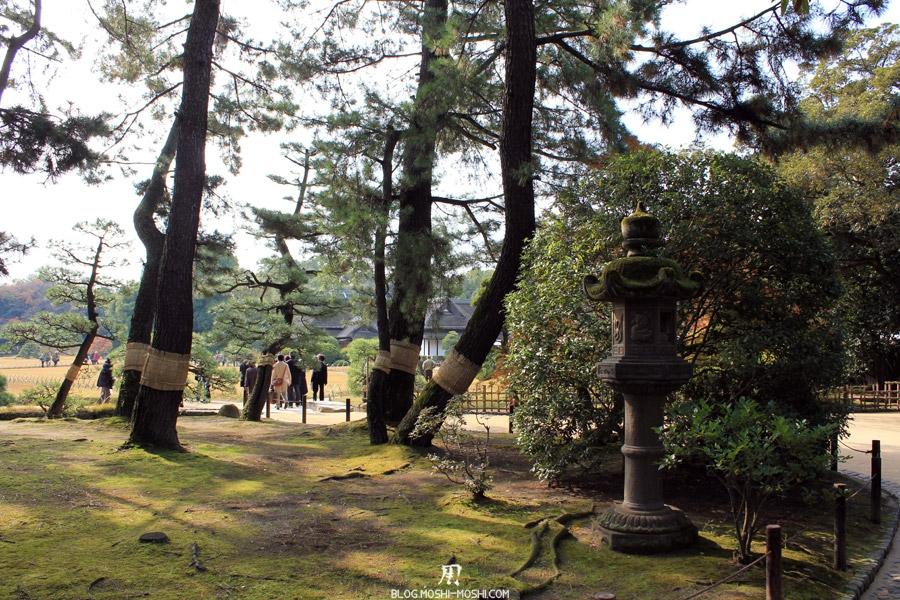 okayama-jardin-koraku-en-saison-momiji-arbres-sacres