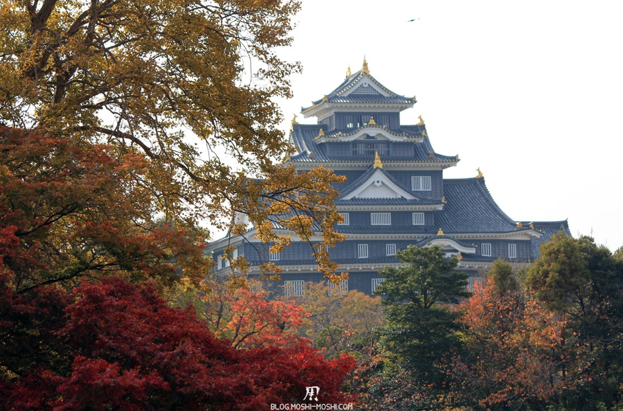 okayama-jardin-koraku-en-saison-momiji-chateau-corneille-dissimule-momiji