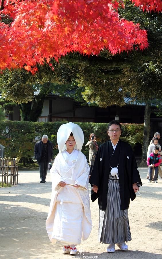 okayama-jardin-koraku-en-saison-momiji-couple-maries-sous-momiji