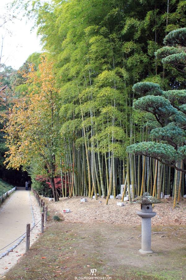 okayama-jardin-koraku-en-saison-momiji-foret-bambou-lanterne