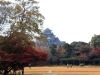 okayama-jardin-koraku-en-saison-momiji-apercu-chateau-okayama