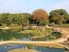 okayama-jardin-koraku-en-saison-momiji-centre-jardin-eau