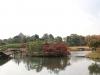 okayama-jardin-koraku-en-saison-momiji-ilot