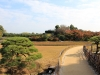 okayama-jardin-koraku-en-saison-momiji-plateforme-sureleve