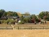 okayama-jardin-koraku-en-saison-momiji-riziere