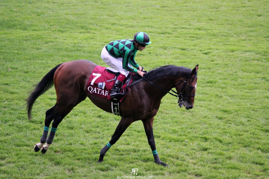 Qatar-prix-Arc-de-Triomphe-QPAT-apres-course-cheval-just-a-way-fatigue