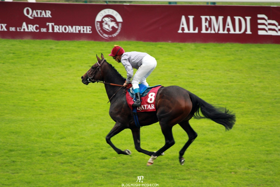 Qatar-prix-Arc-de-Triomphe-QPAT-cheval-treve