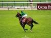 Qatar-prix-Arc-de-Triomphe-QPAT-cheval-japonais-just-a-way