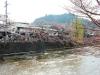 takayama-sanno-matsuri-sakura-riviere-miyagawa