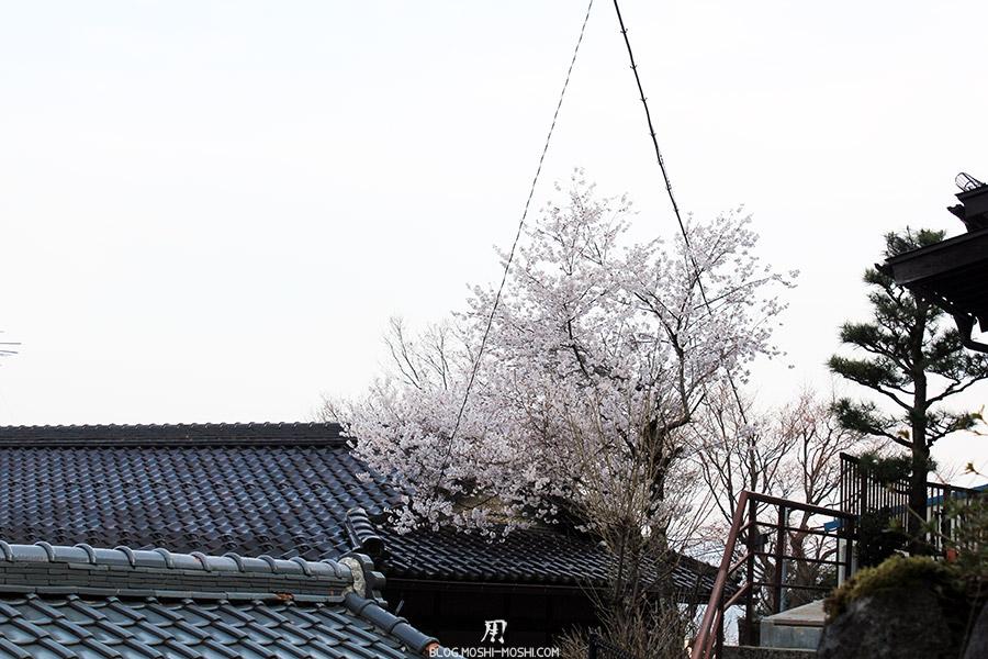 takayama-vieux-quartier-tot-le-matin-cerisier-fleuri-toit