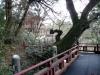 temple-natadera-Komatsu-vers-panorama