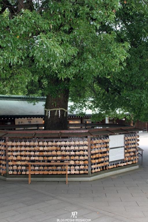 meiji-jingu-Tokyo-arbre-sacre-priere