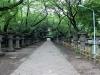 parc-ueno-Tokyo-sanctuaire-toshogu-allee-principale-sortie