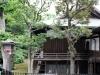 parc-ueno-Tokyo-temple-kiyomizu-kannondo-tout-bois