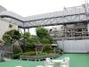 quartier-ginza-Tokyo-toits-temple