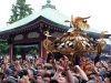 tokyo-sanja-matsuri-asakusa-senso-ji-hondo-mikoshi-victoire