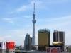 tokyo-sanja-matsuri-quartier-rues-asakusa-observatoire-office-tourisme-skytree-building-asahi-large