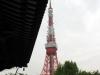 temple-zojoji-Tokyo-tour-tokyo