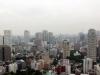 tour-de-tokyo-vue-du-haut-building
