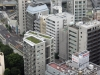 tour-de-tokyo-vue-du-haut-toit-verdure