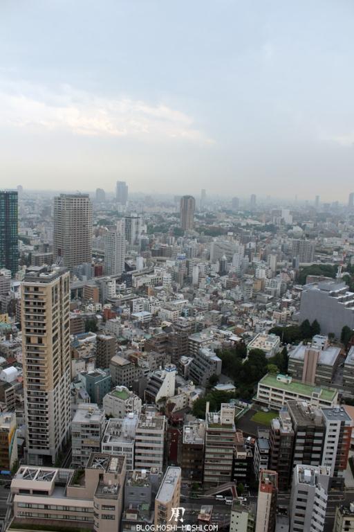 tour-de-tokyo-vue-du-haut-beton