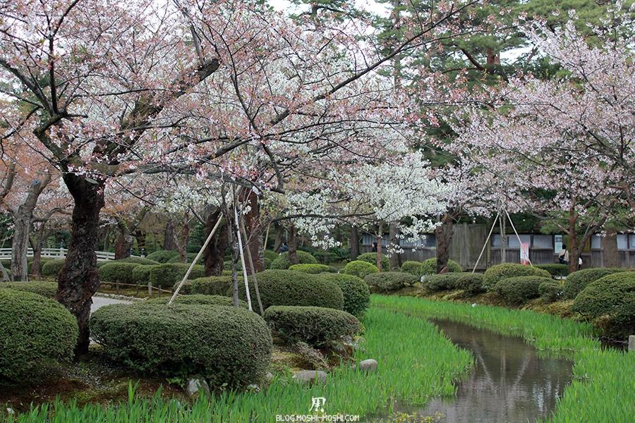 journee-kanazawa-jardin-kenrokuen-riviere-sakura
