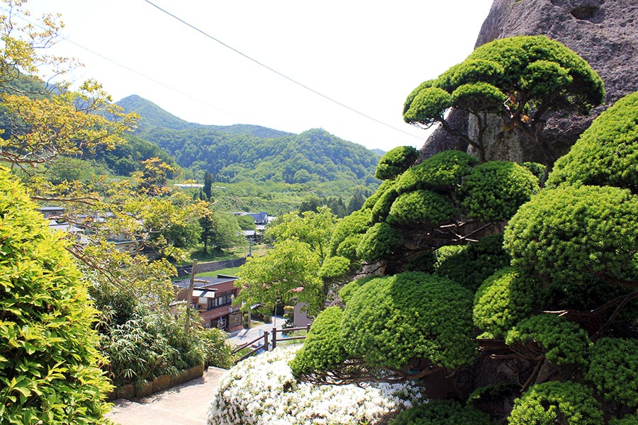 sendai-yamagata-temple-yamadera-risshaku-ji-sortie-dernier-escalier-roche-arbustes