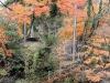 yamanaka-onsen-saison-momiji-escalier-balade-foret