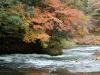 yamanaka-onsen-saison-momiji-riviere-courant-erable-japonais