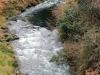 yamanaka-onsen-saison-momiji-riviere-vue-pont