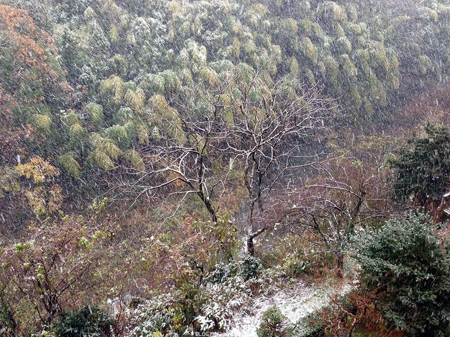 yamanaka-onsen-saison-momiji-vue-chambre-tempete-neige