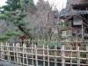 yunokuni-no-mori-ruisseau-bambou