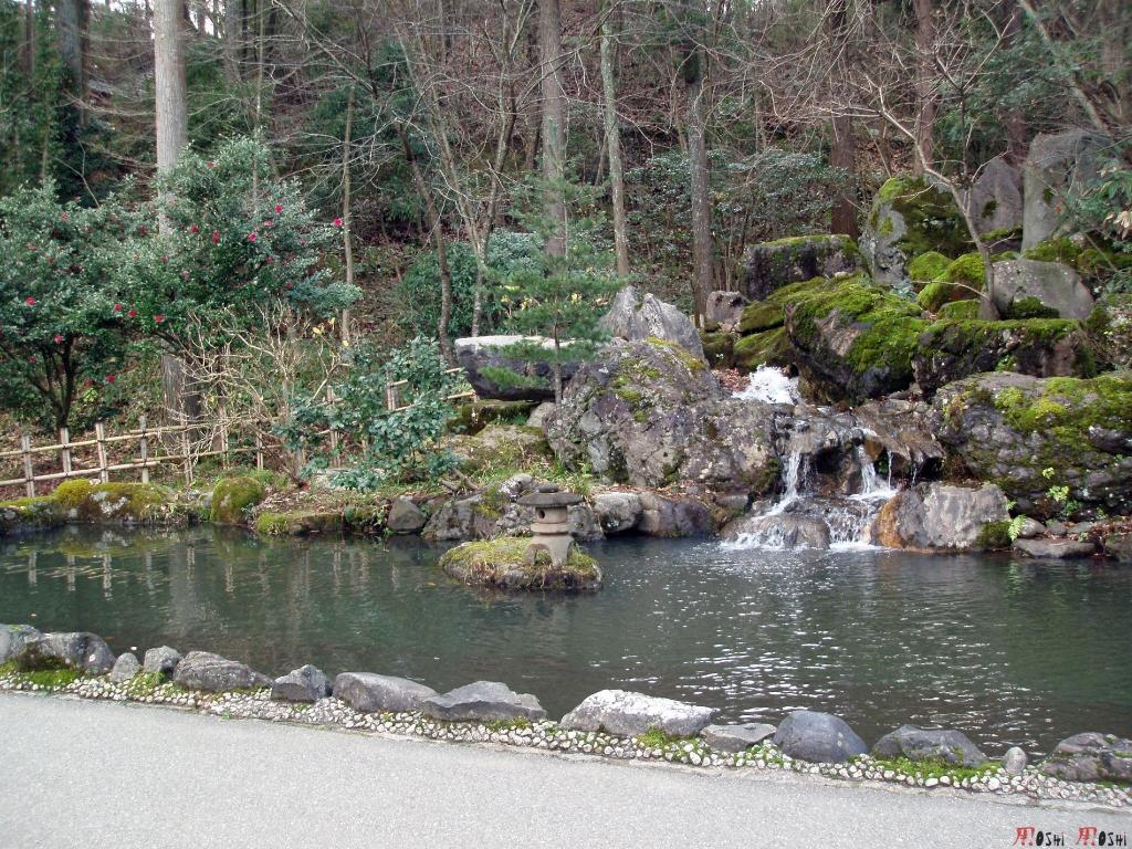 yunokuni-no-mori-bassin-chute