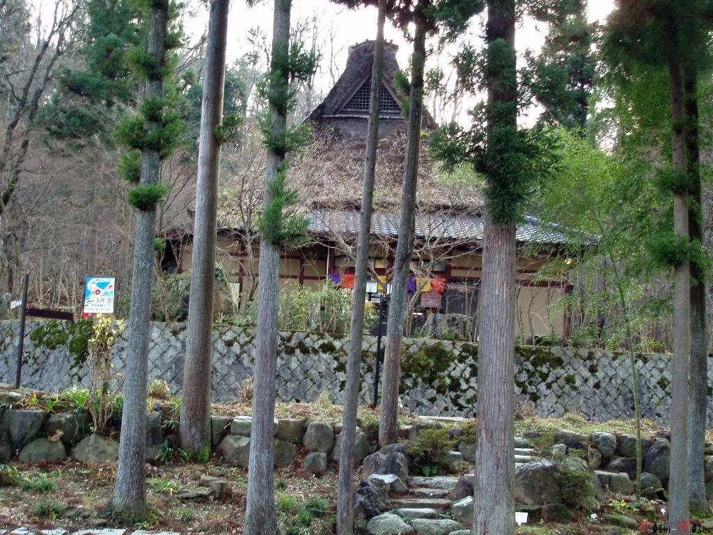 yunokuni-no-mori-maison-traditionnelle-travers-foret