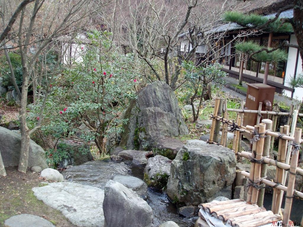 yunokuni-no-mori-ruisseau-pierre