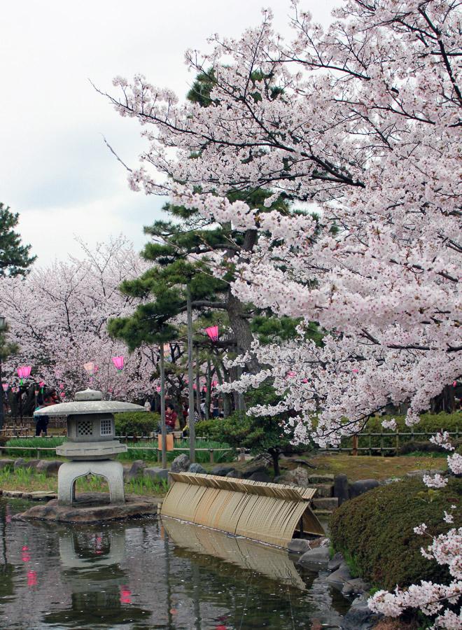 N'hésitez pas à visiter le parc de l'ancien château de Komatsu :)