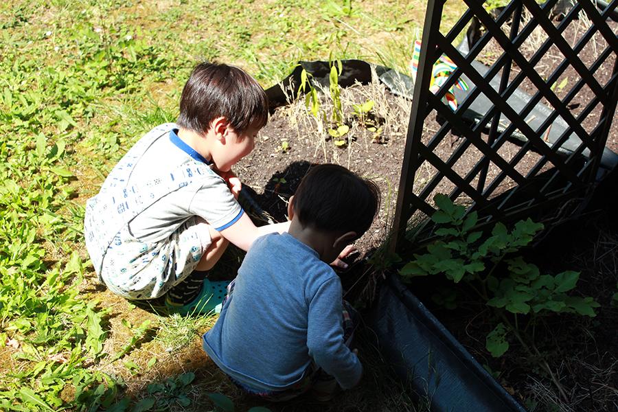 tissu_japonais_fabrication_tablier_japonais_freres_jardinage